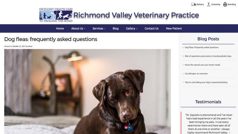 Richmond Valley Veterinary Practice